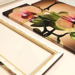 Натяжка-модульной-картины-с-орхидеями-на-деревянный-подрамник